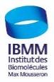 logo ibmm