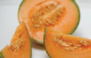 photo melon